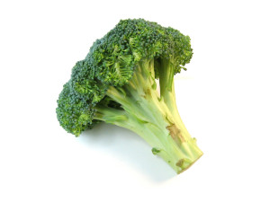 broccoli-morguefile