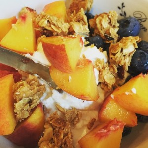Greek Yogurt Fruit Granola